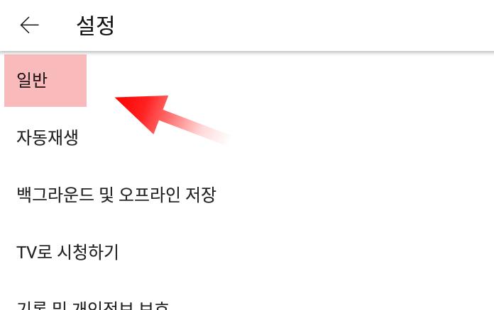 유튜브앱 일반 설정탭