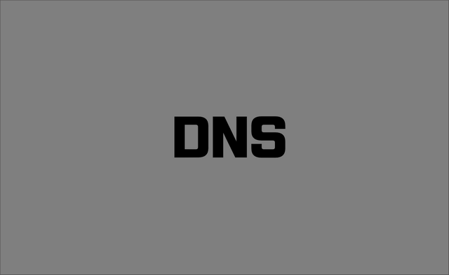 DNS 타이핑